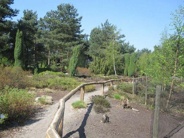 Landschaften Rombergpark