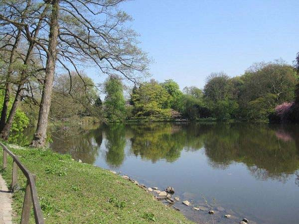 Rombergpark See