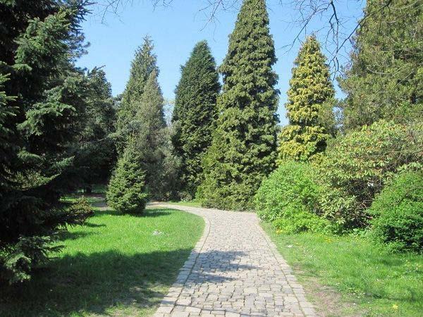 Weg Rombergpark